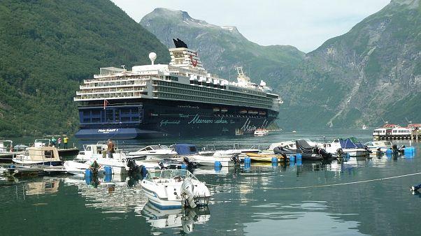 Ölü balık enerjisi: Norveç'te deniz taşımacılığı için balıktan yakıt elde edilecek