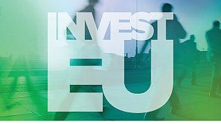 Υπερψηφίστηκαν οι προτάσεις του Θ. Ζαγοράκη για το InvestEU