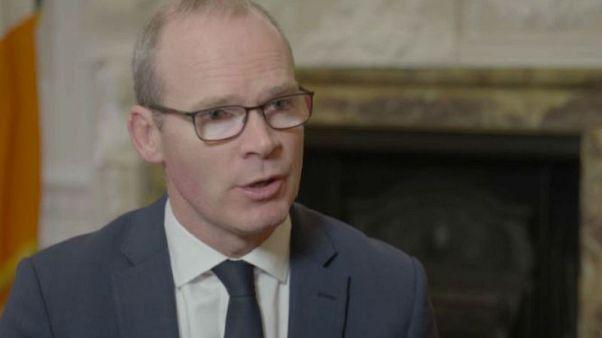 Irish foreign minister Simon Coveney talks about Brexit on Raw Politics