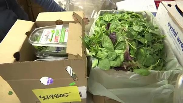 USA: kólibaktériummal fertőzött saláta a boltokban