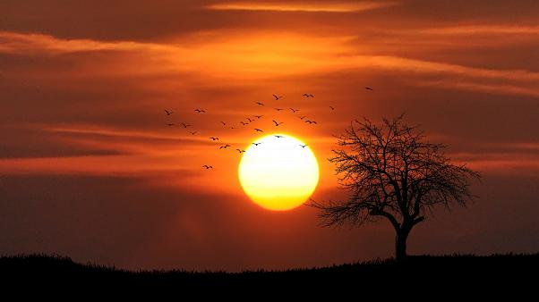 Küresel ısınmaya çözüm önerisi: Güneş'i gölgeleyelim