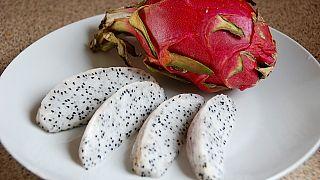 Ejder meyvesi tarihe geçti: Türkiye'nin ilk tropikal meyvesine tescil