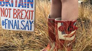 Anti Brexit protesters gathering outside an EU summit in Brussels