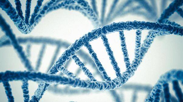 Bebeklerin genetiği ile oynanmasına tepki: Çılgınlık ve ahlaksızlık