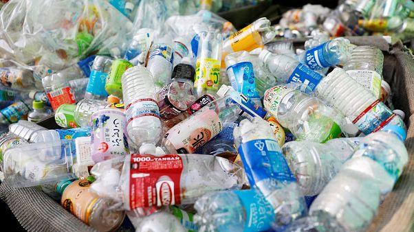 ТЕСТ: насколько вы знакомы с проблемой пластикового мусора?