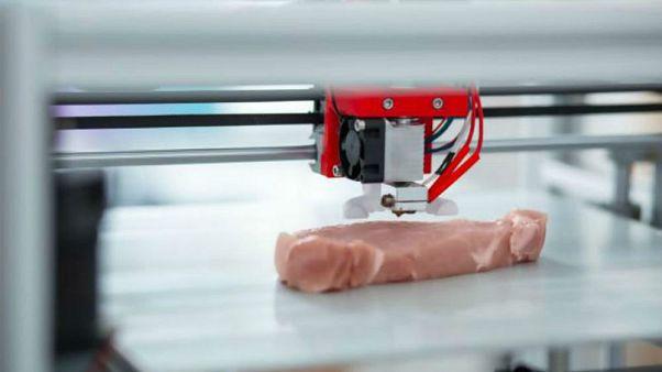 Üç boyutlu yazıcı ile üretilen vegan etler 2020'de piyasada olacak