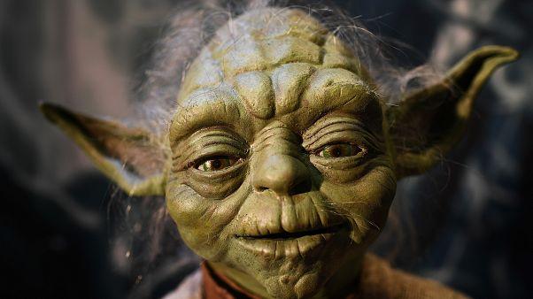 Boldog a lengyel apa, aki kiharcolta, hogy a Yoda nevet adhassa fiának