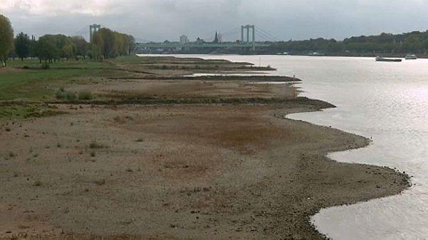 Rhein-Niedrigwasser and Waldbrände - Deutschland und der Klimawandel
