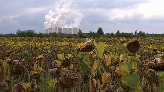 L'UE regarde le climat d'ici 2050