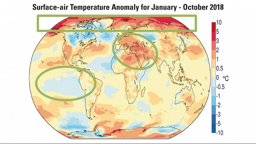 """Cambiamento climatico: """"Siamo l'ultima generazione che può fare qualcosa"""""""
