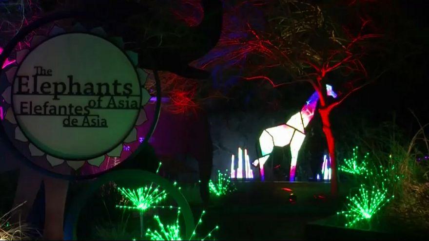 افتتاح سرزمین عجایب در باغ وحش لسآنجلس در آستانه کریسمس