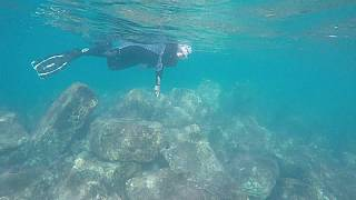 Divers glide over ruins at underwater archaeological site