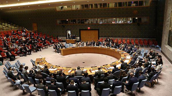 Almanya'dan Fransa'ya: BM Güvenlik Konseyi daimi temsilciliği hakkından vazgeç
