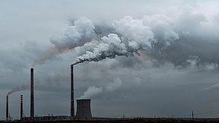 Polonya'da başlayan İklim Değişikliği Konferansı COP24 hakkında bilmeniz gerekenler
