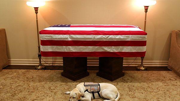 Η συγκινητική φωτογραφία με τον σκύλο του Τζορτζ Μπους