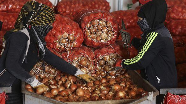 Kuru soğanın önlenemez yükselişi: Fiyatlar Kasım'da yüzde 51 arttı