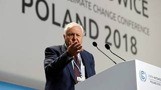 Sir David Attenborough warns of 'collapse of civilisations' at COP24 summit