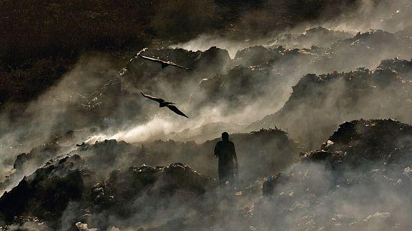Foto de Yann Arthus-Bertrand fornecida pela org do Exodus Aveiro Fest