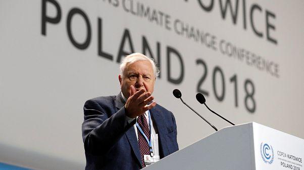 Civilizációnk összeomlására figyelmeztet Attenborough