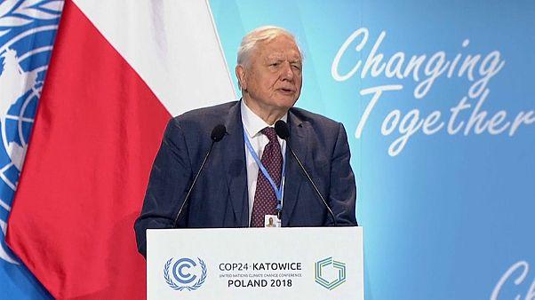 Weltklimakonferenz: Naturforscher Sir David Attenborough findet deutliche Worte