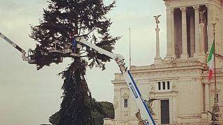 Idén is borzasztó lett a római karácsonyfa