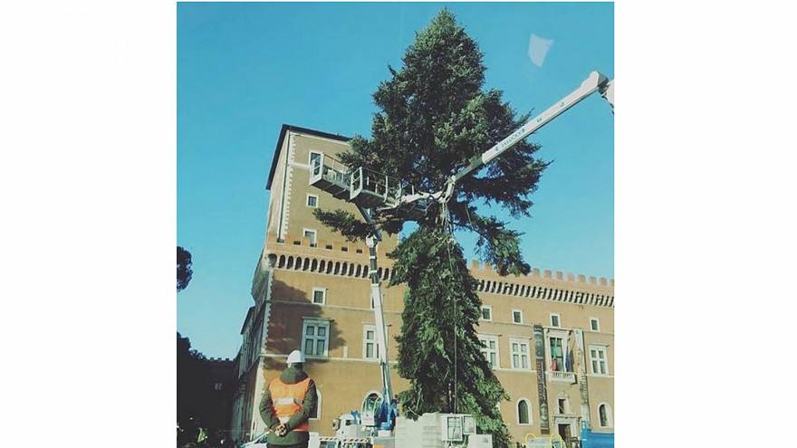 Is Rome on course for 'world's ugliest Christmas tree' for second consecutive year?