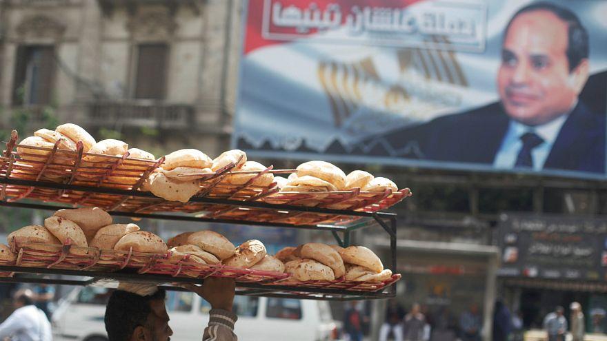 مصر تسعى لشراء كمية غير محددة من القمح في يناير