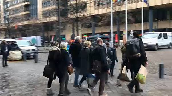 В Словакии освобождены члены «Гринпис»