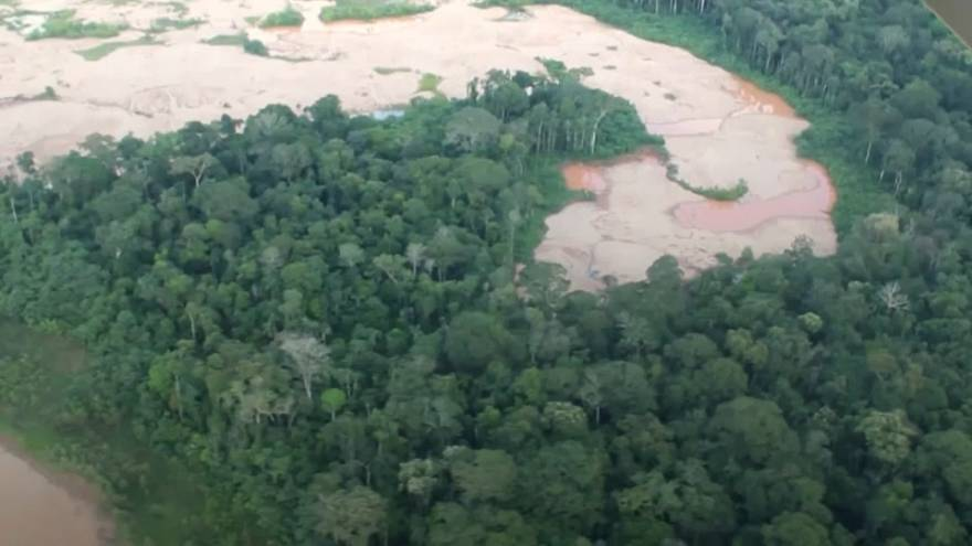 Churches combine for campaign to save Peruvian rainforest