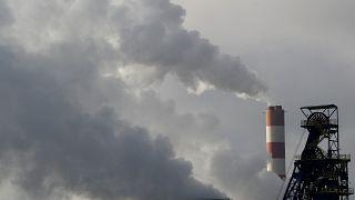 """El líderazgo europeo en defensa del medioambiente, en """"The Brief from Brussels"""""""
