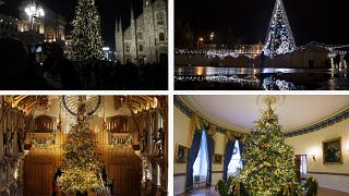 Vote now: Which cities have the best and worst Christmas trees?