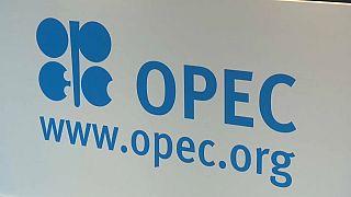 OPEC müzakereleri Riyad ve Tahran arasındaki anlaşmazlık yüzünden kilitlendi