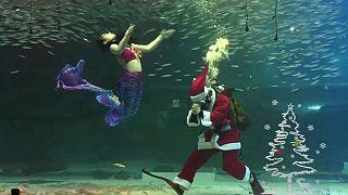 شاهد: سانتا كلوز يقدم عرضا في حوض مائي في سيول