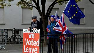 Pro-Brexit and anti-Brexit protesters hold posters and flags in Whitehall