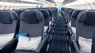 الخطوط الجوية الإسكندنافية تقترح تذاكر سفر مجانية للأطفال