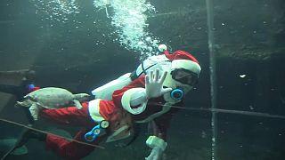 Víz alatti Mikulás