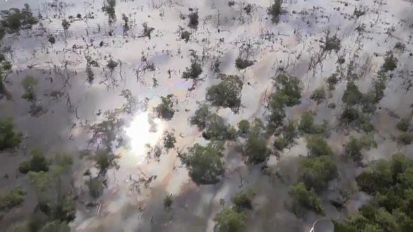 Οικολογική καταστροφή στο Ρίο μετά από διάρρηξη σε αγωγό πετρελαίου