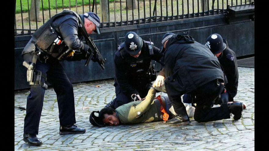 شاهد: الشرطة البريطانية توقف شخصا داخل حرم البرلمان باستخدام مسدس صاعق
