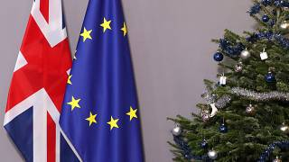 The Brief from Brussels : l'UE unie sur le Brexit