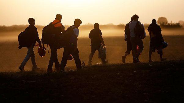 Göçmenler en çok Amerika'ya gitmek istiyor