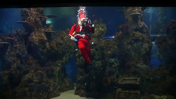Santa goes all scuba in Malta