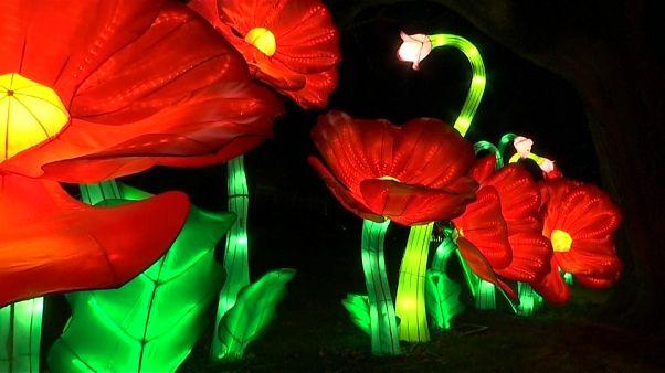 شاهد: أول مهرجان شتوي للفوانيس يضيء مدينة نيويورك