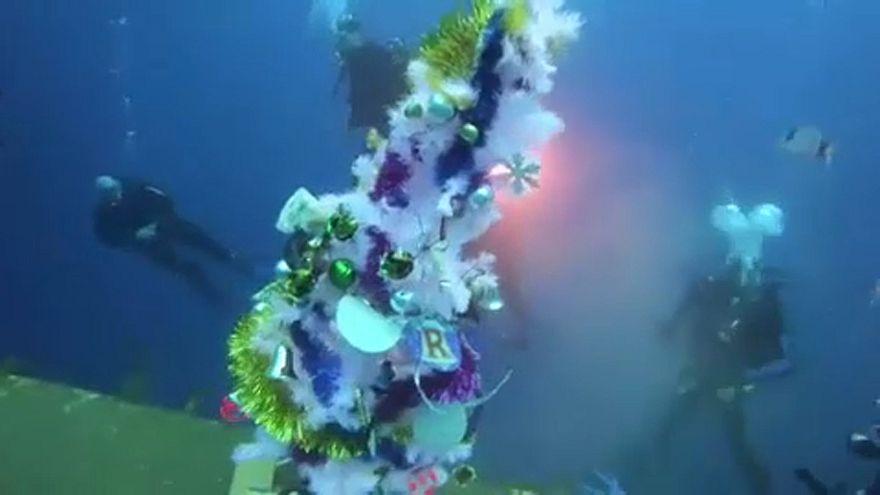 Cipro: l'albero di Natale subacqueo