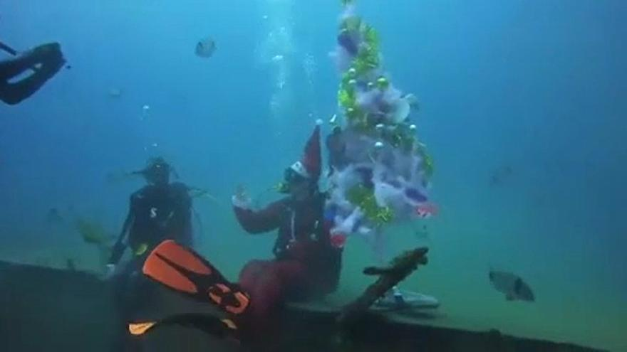 Праздничную елку установили на дне моря