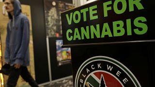 Yeni Zelandalılar esrarın yasallaştırılmasını oylayacak