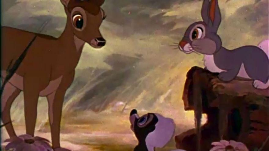 ABD: Geyik avcısına hapiste 'Bambi' çizgi filmi izleme cezası
