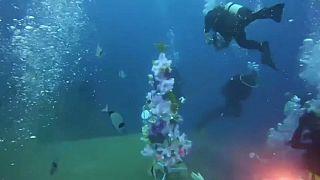 شاهد:  شجرة عيد الميلاد تزيّن قاع البحر قبالة السواحل القبرصية