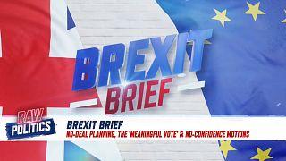 Brexit Brief on Raw Politics