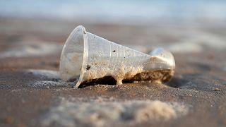 Acabar com a poluição dos plásticos nos oceanos: um projeto de 2018 para o futuro