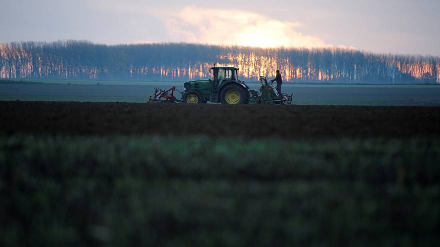 By banning pesticides and GMOs, the EU is sleepwalking into a food security crisis   View